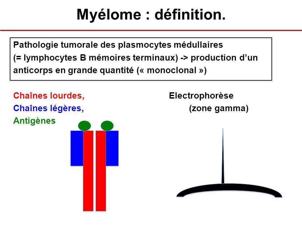Myélome : définition.