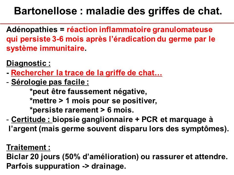 Bartonellose : maladie des griffes de chat.