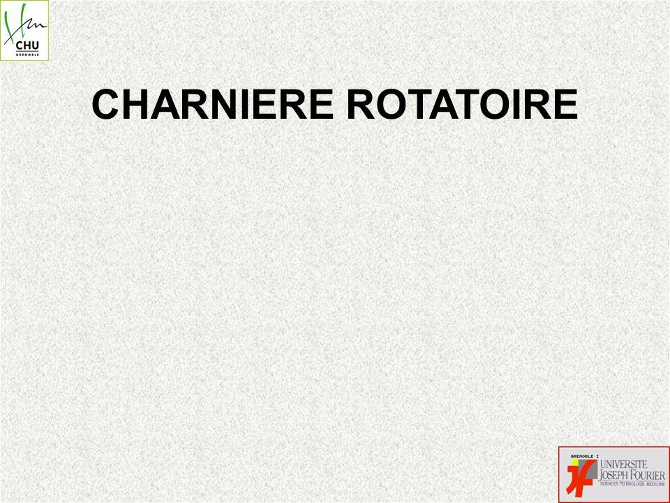 CHARNIERE ROTATOIRE