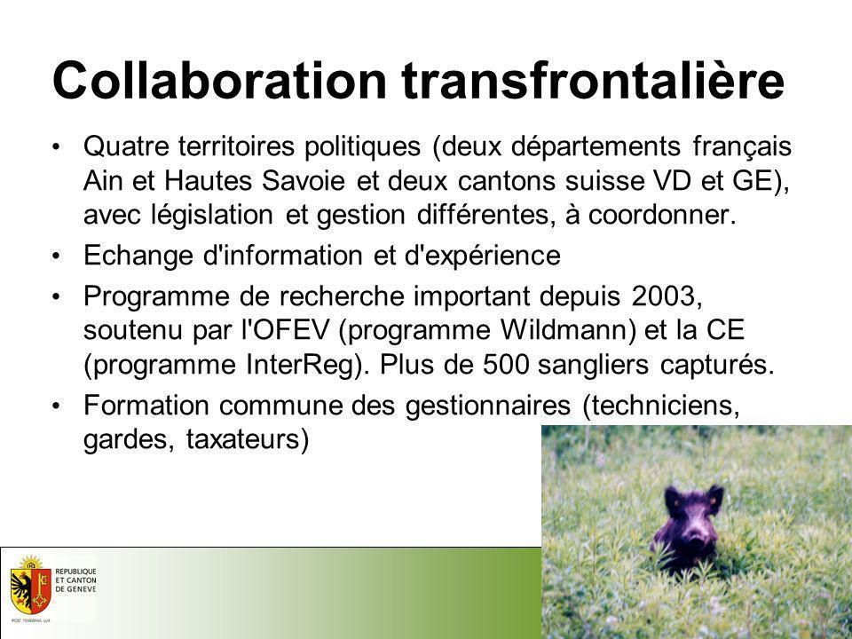 Collaboration transfrontalière
