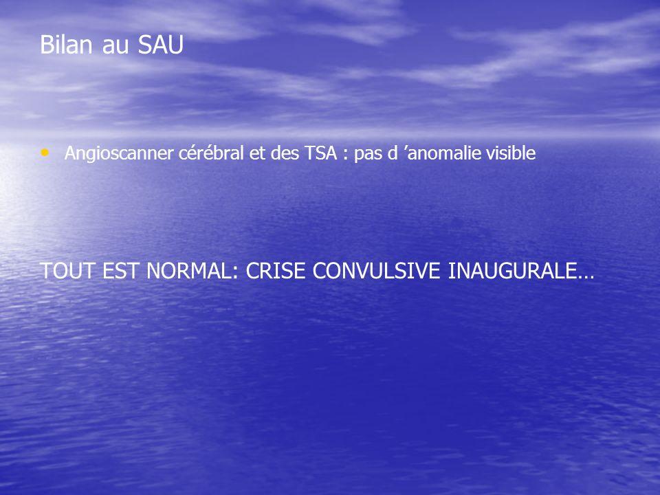 Bilan au SAU TOUT EST NORMAL: CRISE CONVULSIVE INAUGURALE…