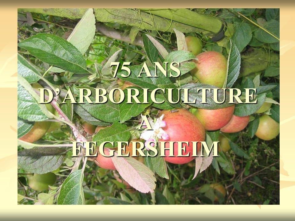 75 ANS D'ARBORICULTURE A FEGERSHEIM