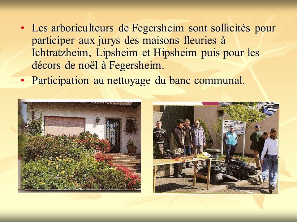 Les arboriculteurs de Fegersheim sont sollicités pour participer aux jurys des maisons fleuries à Ichtratzheim, Lipsheim et Hipsheim puis pour les décors de noël à Fegersheim.