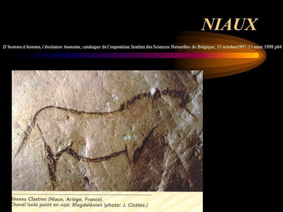 NIAUX D'homme à homme, l'évolution humaine, catalogue de l'exposition Institut des Sciences Naturelles de Belgique, 15 octobre1997-15 mars 1998 p64.