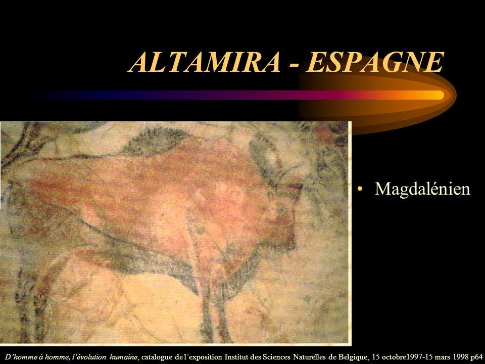 ALTAMIRA - ESPAGNE Magdalénien