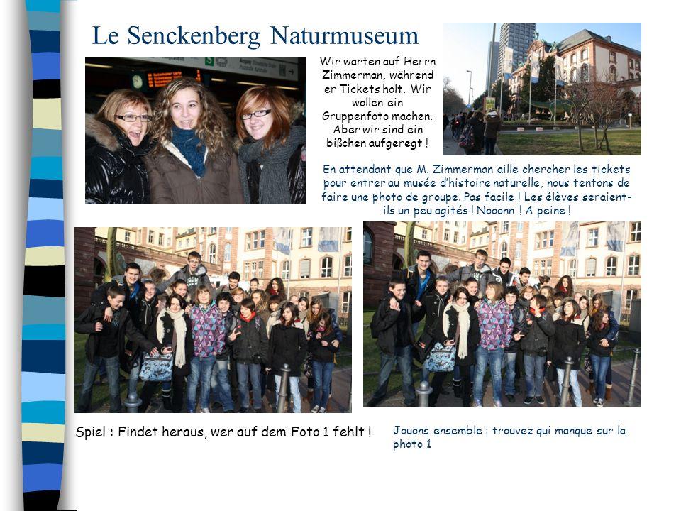 Le Senckenberg Naturmuseum