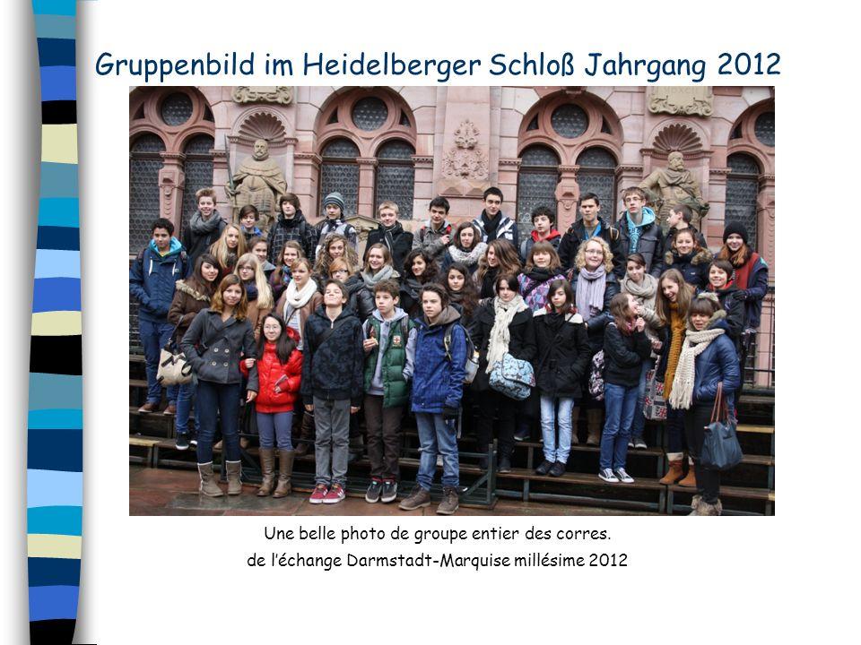 Gruppenbild im Heidelberger Schloß Jahrgang 2012