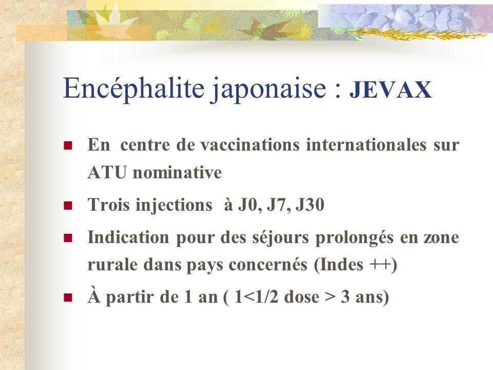Encéphalite japonaise : JEVAX