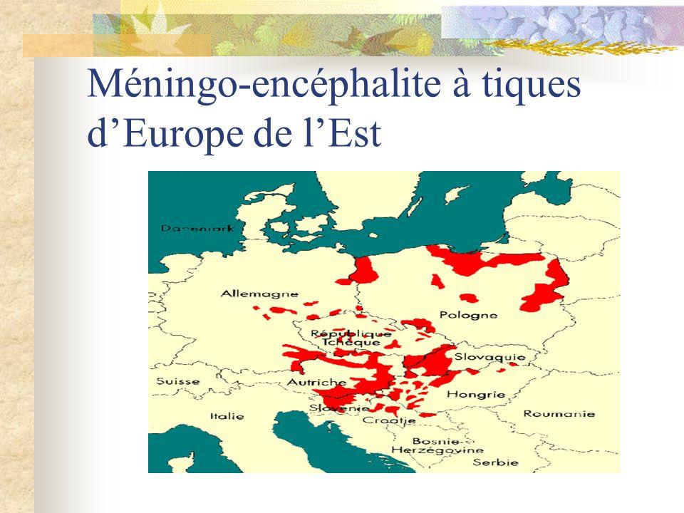 Méningo-encéphalite à tiques d'Europe de l'Est