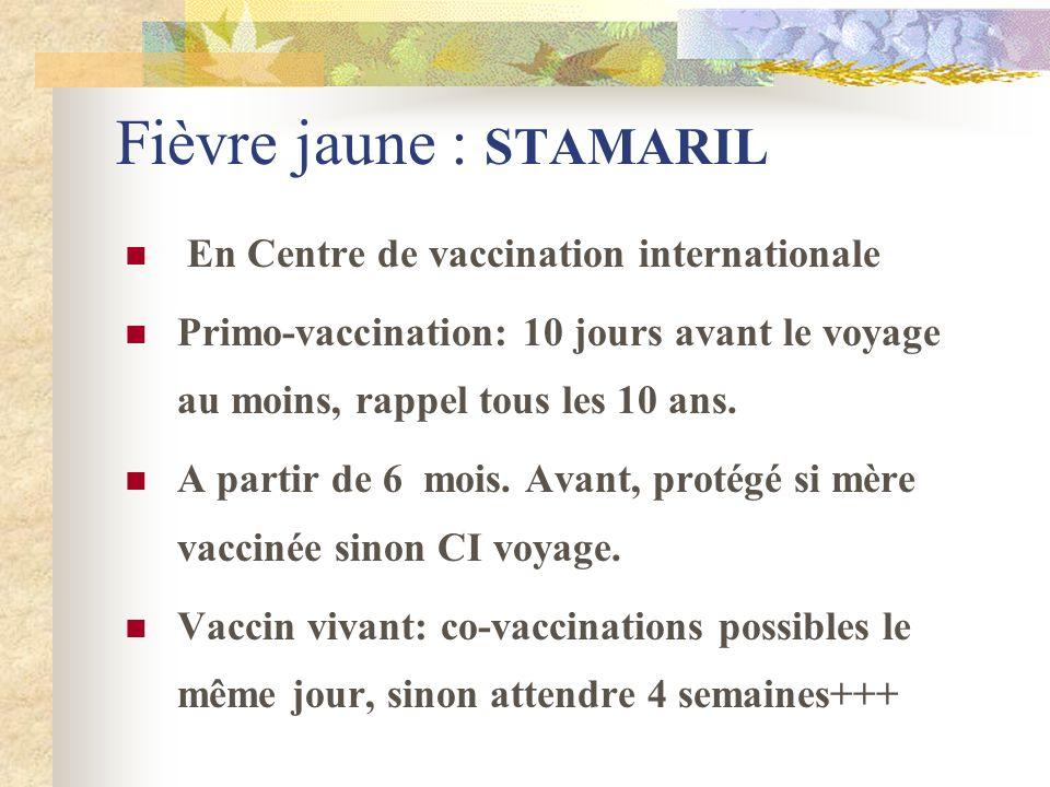 Fièvre jaune : STAMARIL