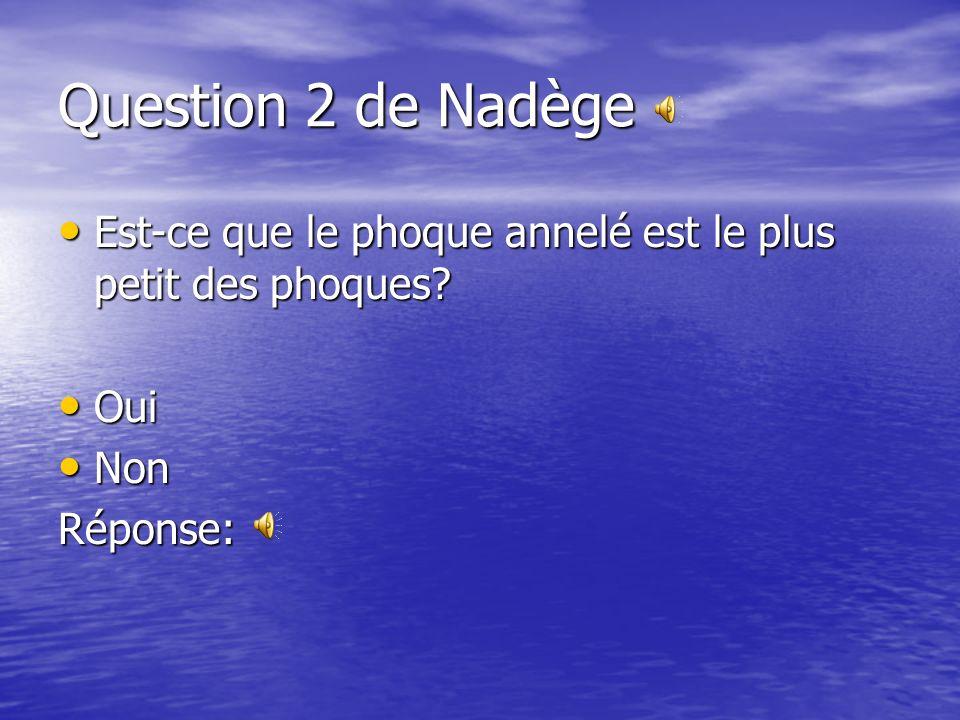 Question 2 de Nadège Est-ce que le phoque annelé est le plus petit des phoques Oui Non Réponse: