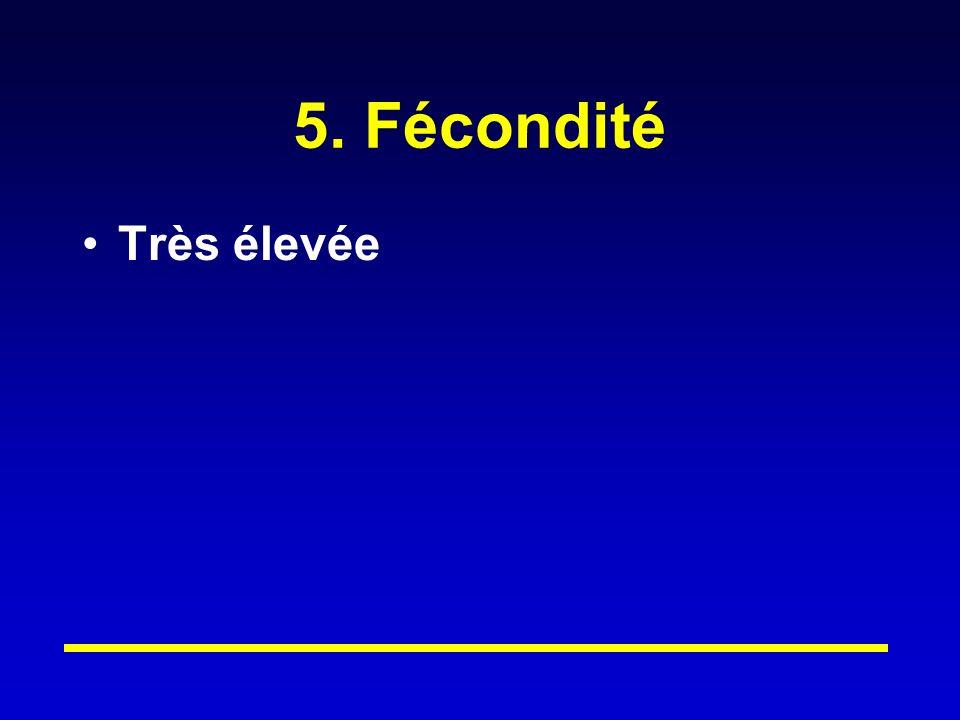 5. Fécondité Très élevée