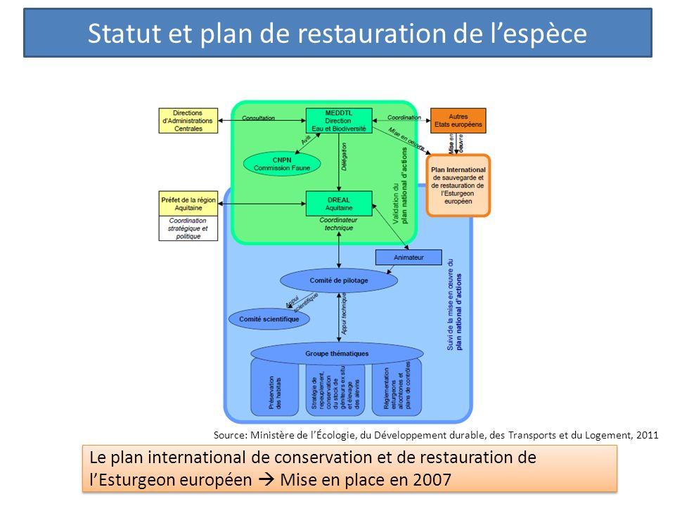 Statut et plan de restauration de l'espèce