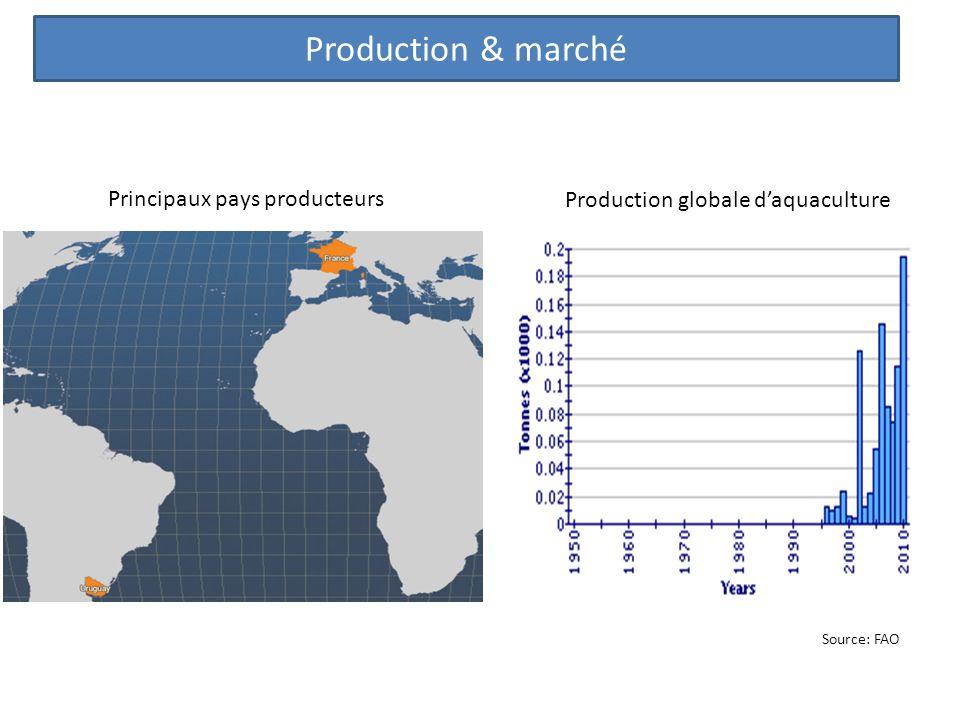 Principaux pays producteurs