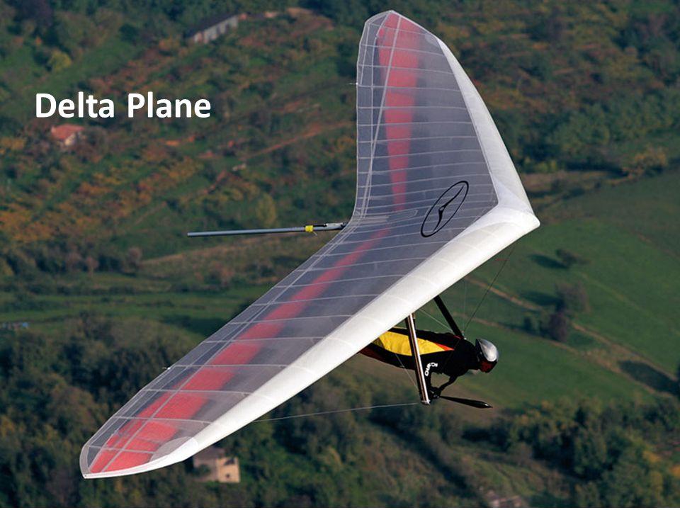 Delta Plane Vol libre - libériste
