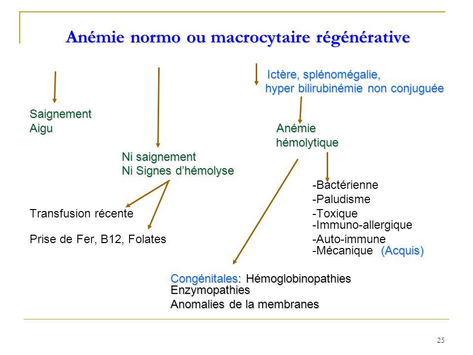 Anémie normo ou macrocytaire régénérative