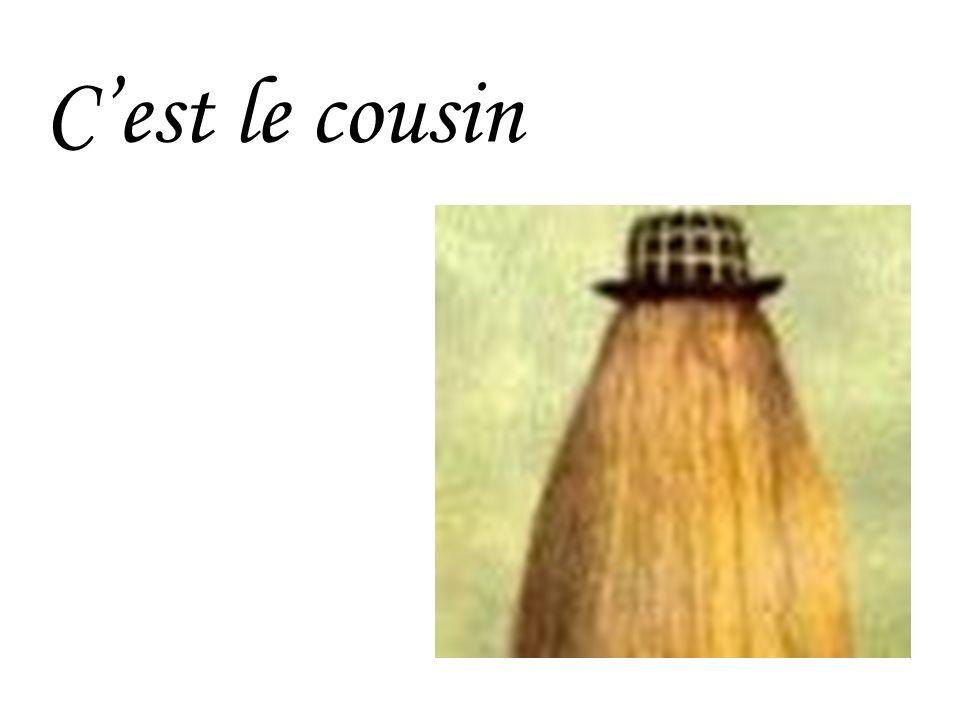 C'est le cousin