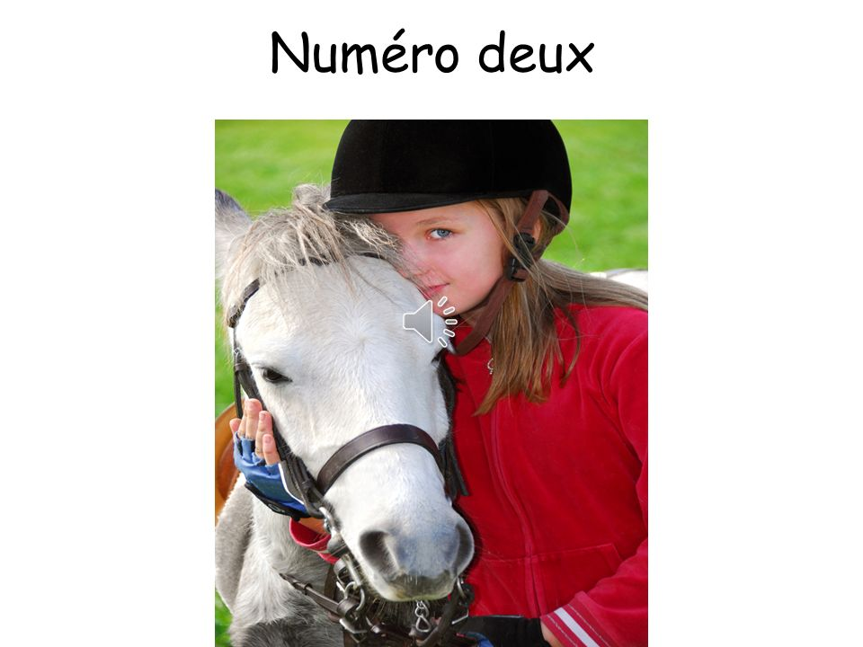 Numéro deux Answers: My name is Juile. I am 11 years old.