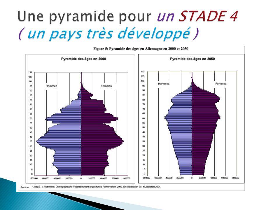 Une pyramide pour un STADE 4 ( un pays très développé )