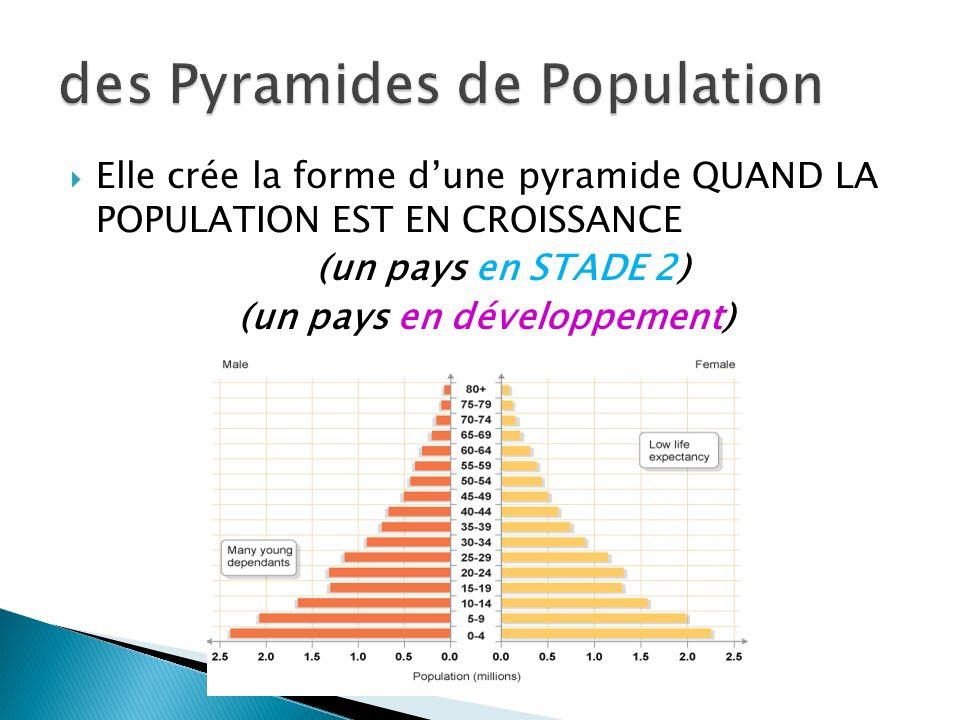 des Pyramides de Population