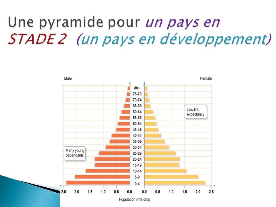 Une pyramide pour un pays en STADE 2 (un pays en développement)