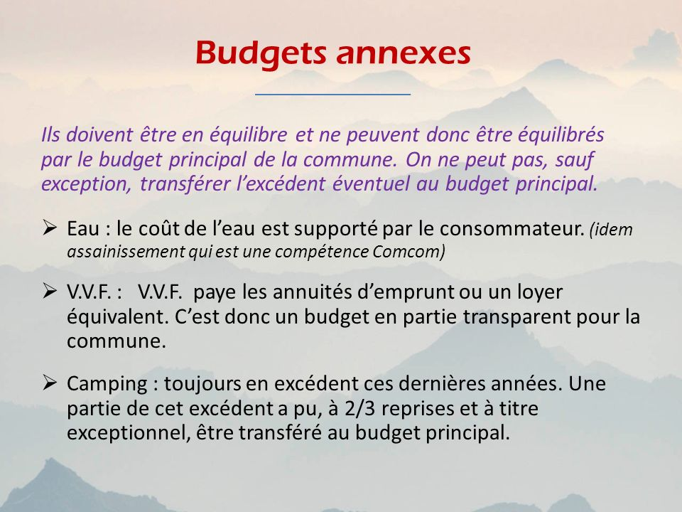 Budgets annexes