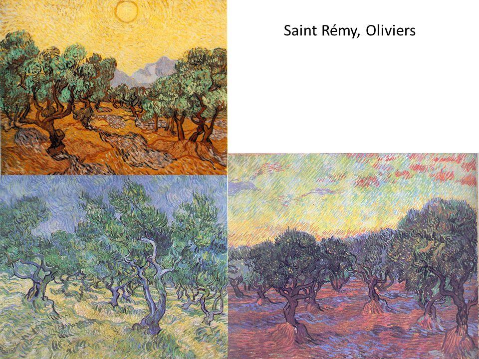 Saint Rémy, Oliviers