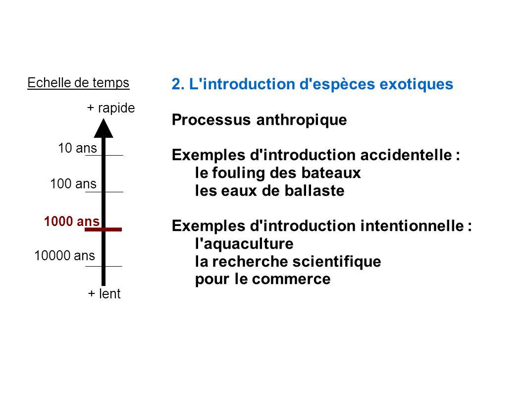 2. L introduction d espèces exotiques Processus anthropique