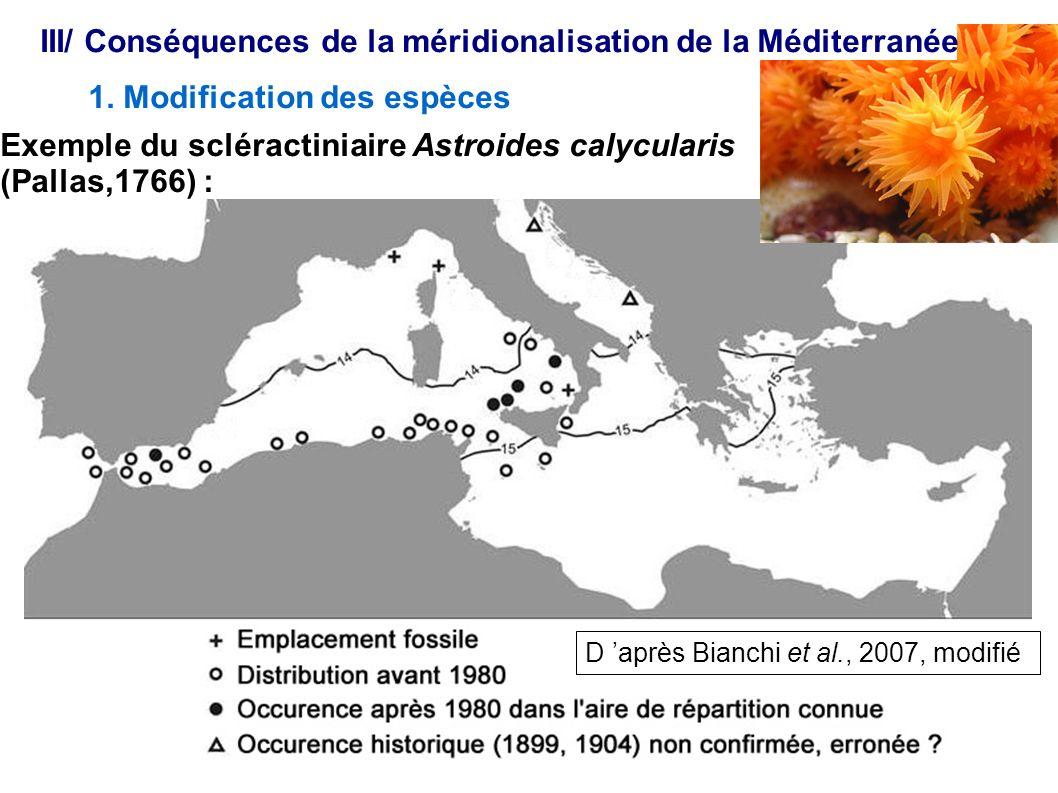 III/ Conséquences de la méridionalisation de la Méditerranée