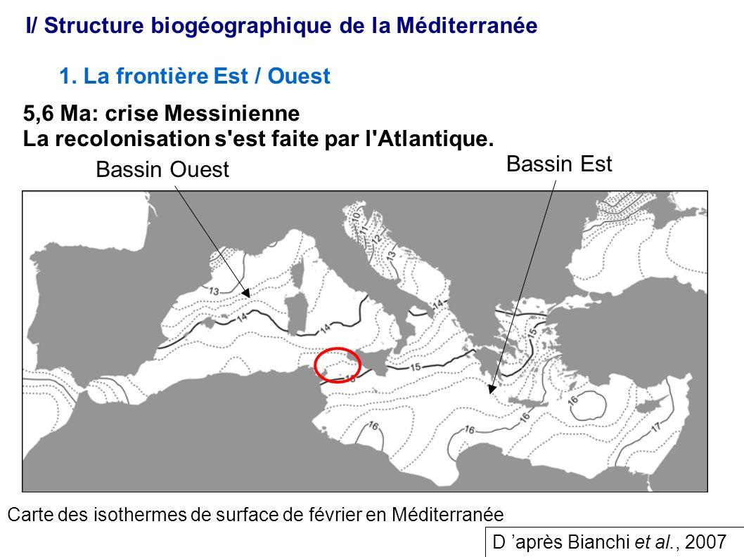 I/ Structure biogéographique de la Méditerranée
