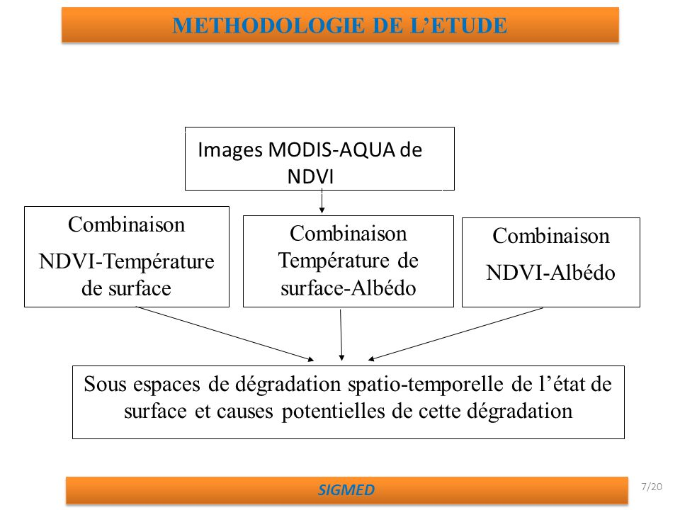 METHODOLOGIE DE L'ETUDE
