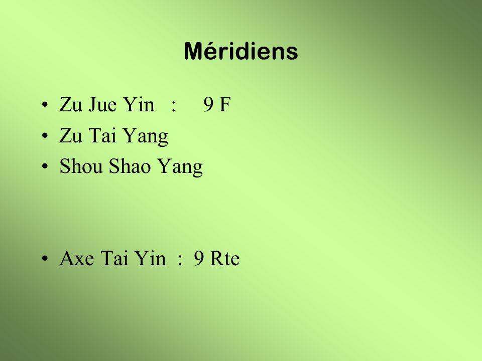 Méridiens Zu Jue Yin : 9 F Zu Tai Yang Shou Shao Yang