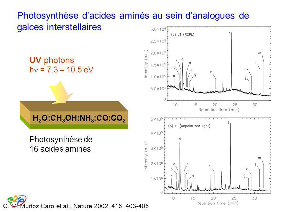 Photosynthèse d'acides aminés au sein d'analogues de galces interstellaires