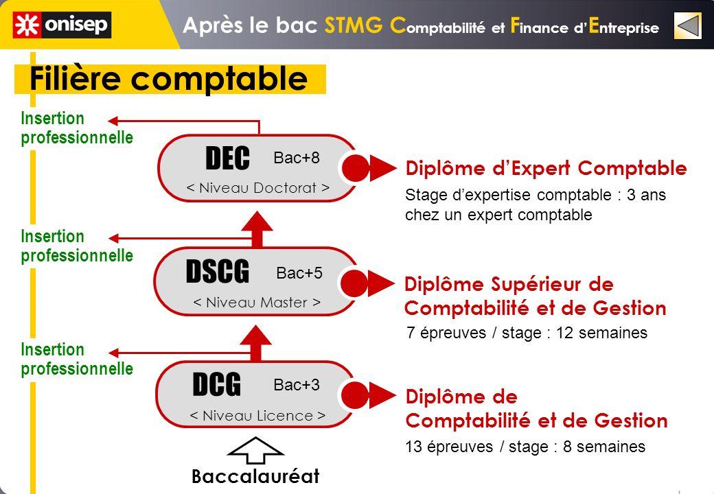 Filière comptable DEC DSCG DCG