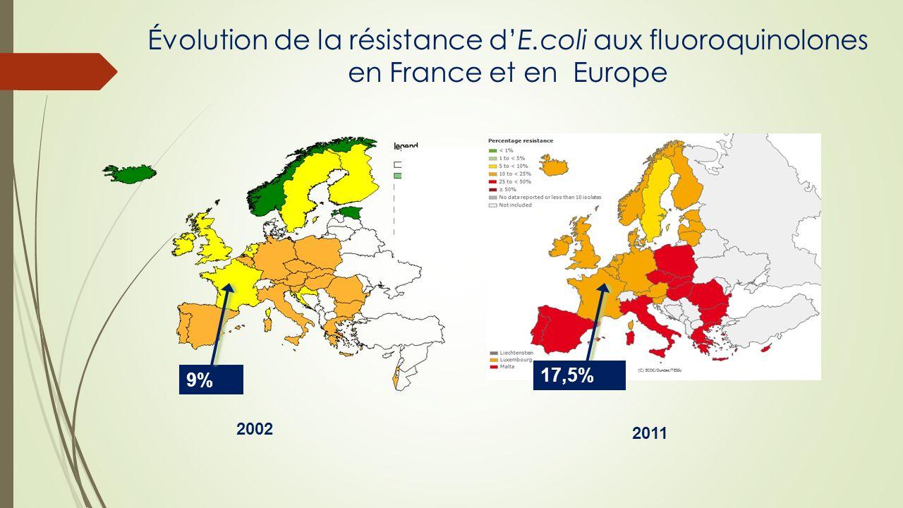 Évolution de la résistance d'E