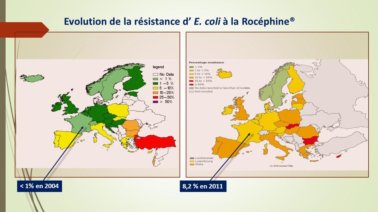 Evolution de la résistance d' E. coli à la Rocéphine®