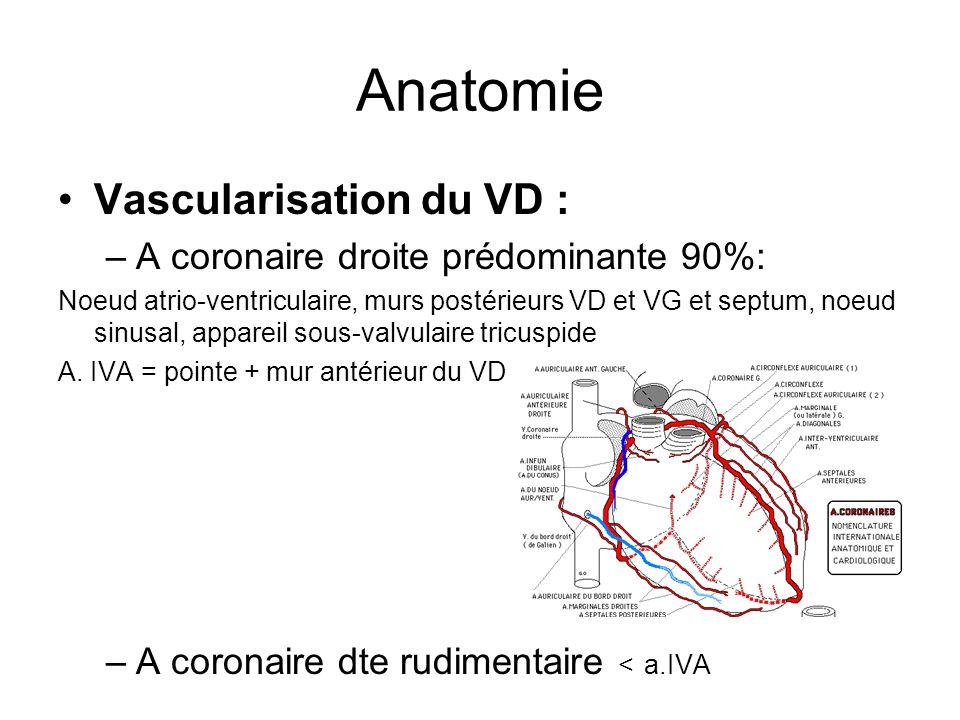 Anatomie Vascularisation du VD : A coronaire droite prédominante 90%: