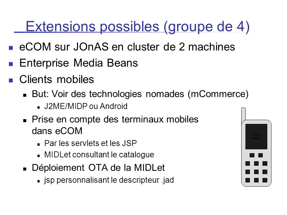 Extensions possibles (groupe de 4)‏