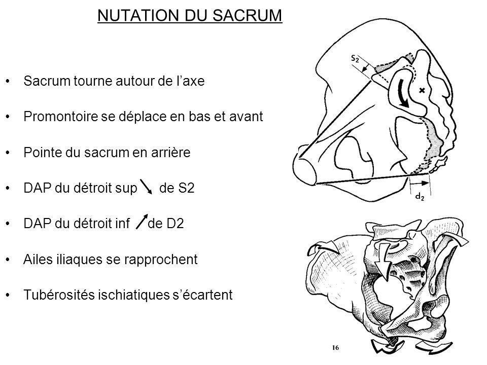 NUTATION DU SACRUM Sacrum tourne autour de l'axe