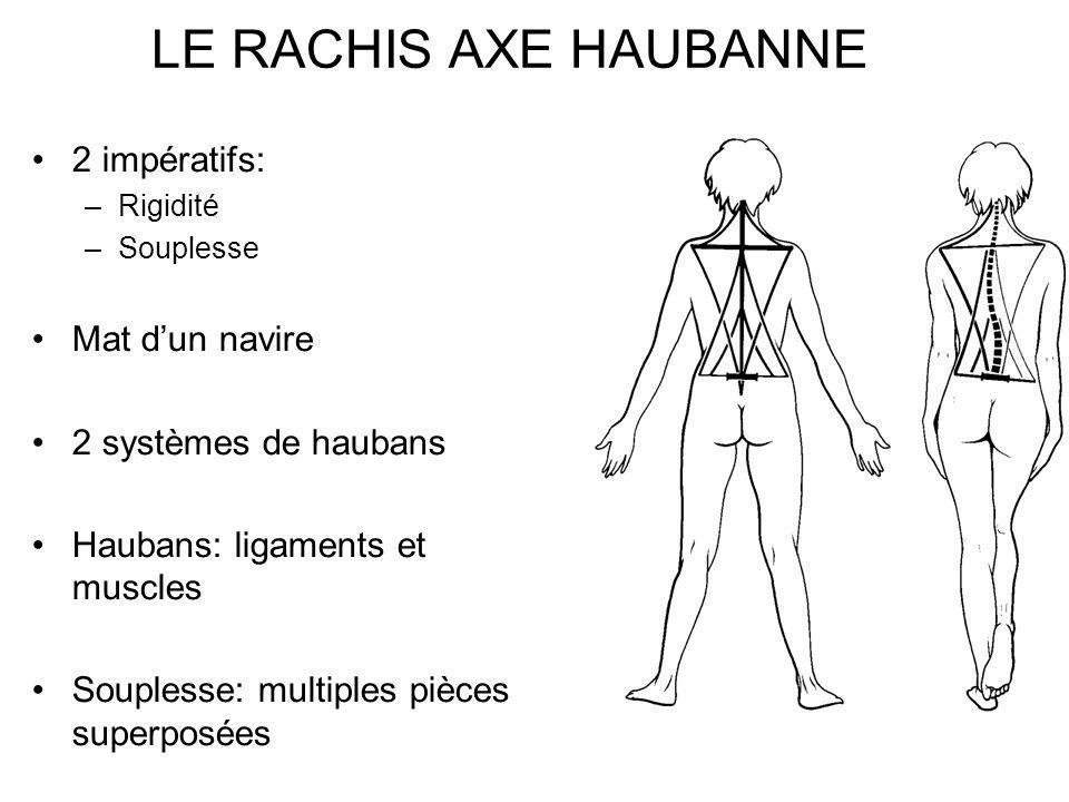 LE RACHIS AXE HAUBANNE 2 impératifs: Mat d'un navire