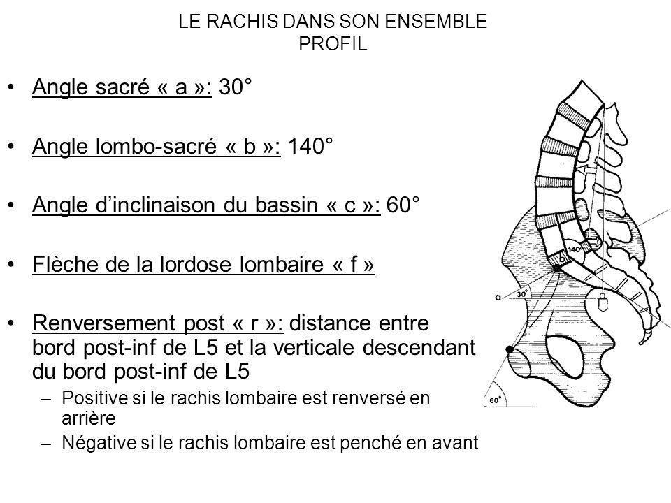 LE RACHIS DANS SON ENSEMBLE PROFIL