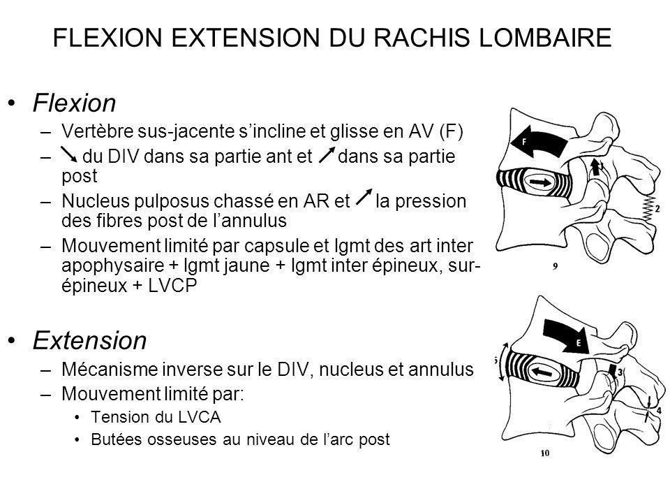 FLEXION EXTENSION DU RACHIS LOMBAIRE