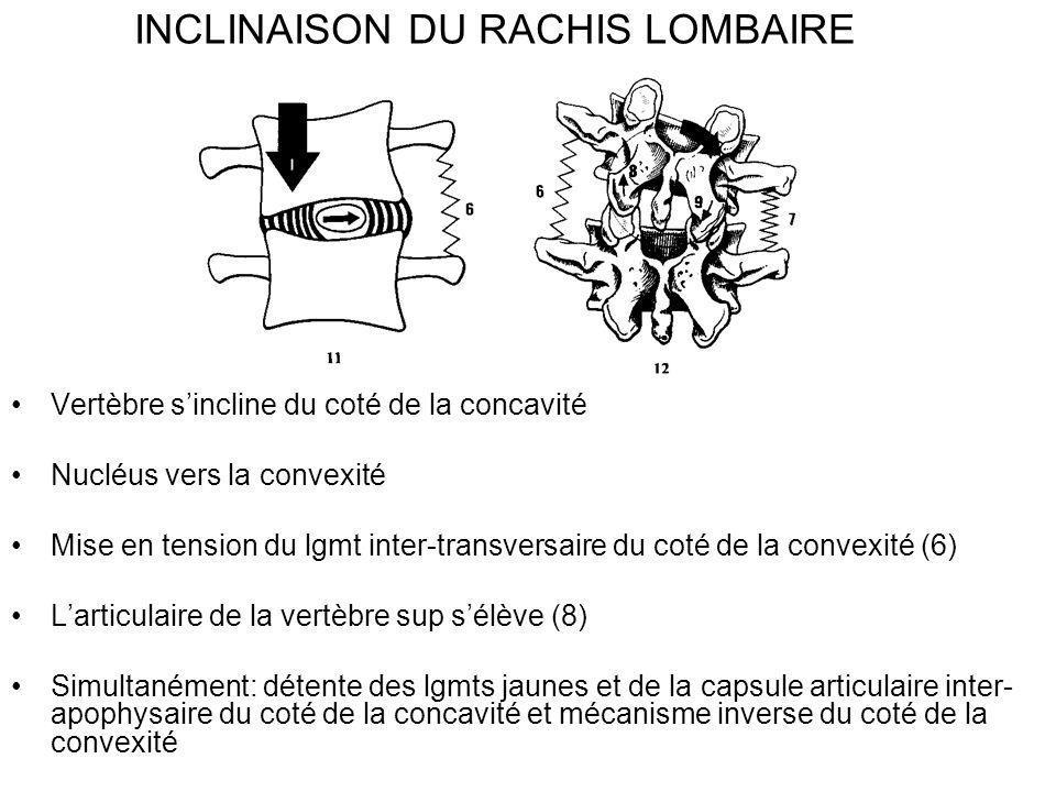 INCLINAISON DU RACHIS LOMBAIRE