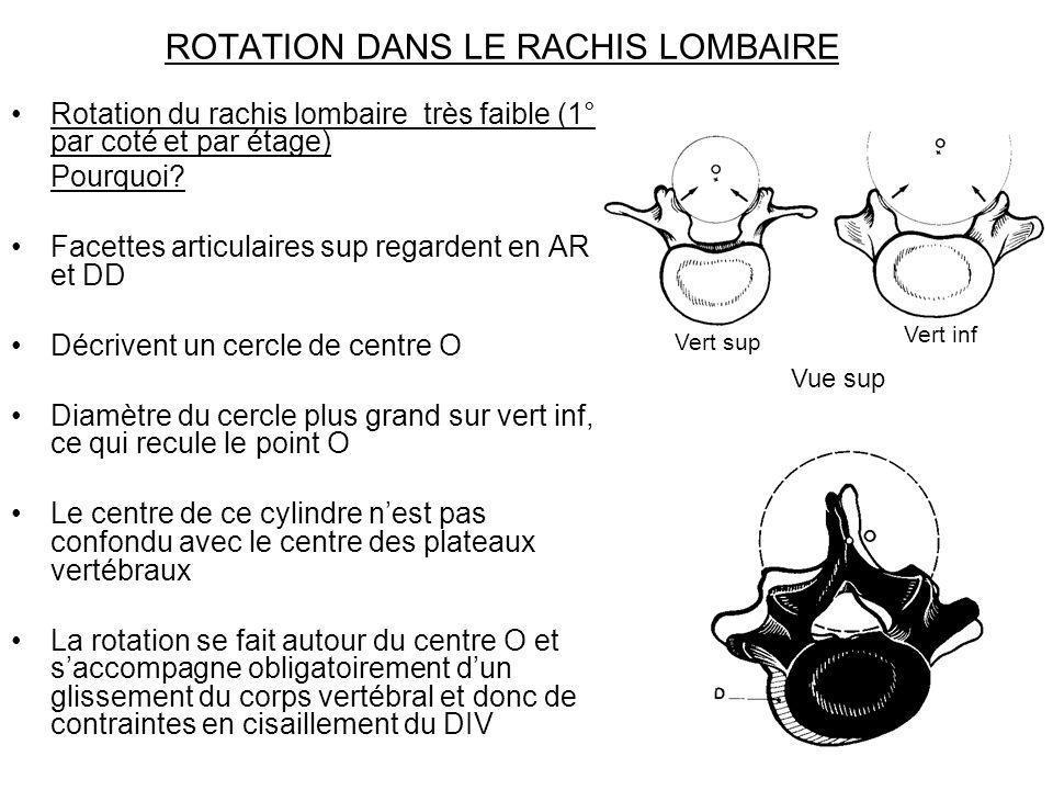 ROTATION DANS LE RACHIS LOMBAIRE