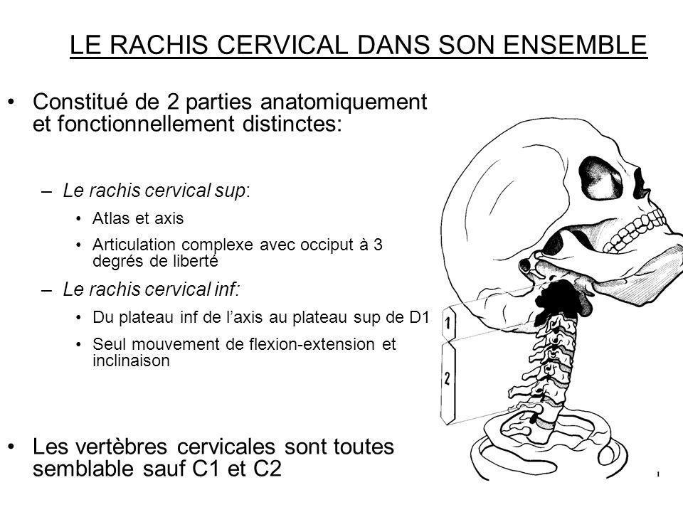 LE RACHIS CERVICAL DANS SON ENSEMBLE