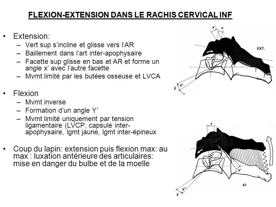 FLEXION-EXTENSION DANS LE RACHIS CERVICAL INF