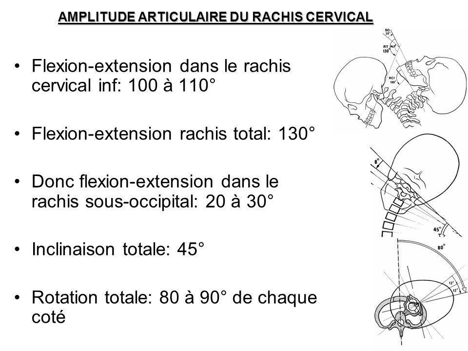 AMPLITUDE ARTICULAIRE DU RACHIS CERVICAL