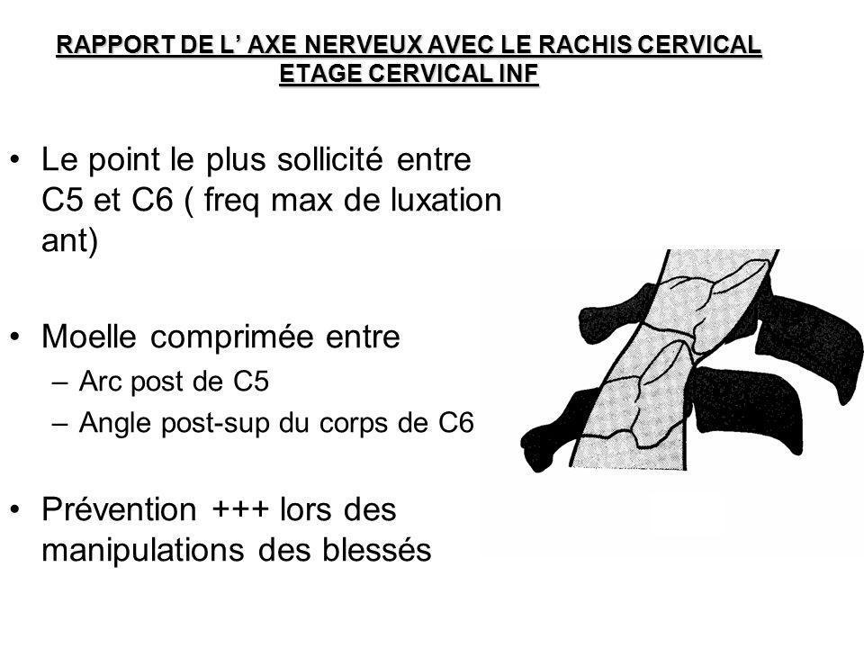 RAPPORT DE L' AXE NERVEUX AVEC LE RACHIS CERVICAL ETAGE CERVICAL INF