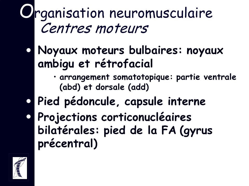 Organisation neuromusculaire Centres moteurs