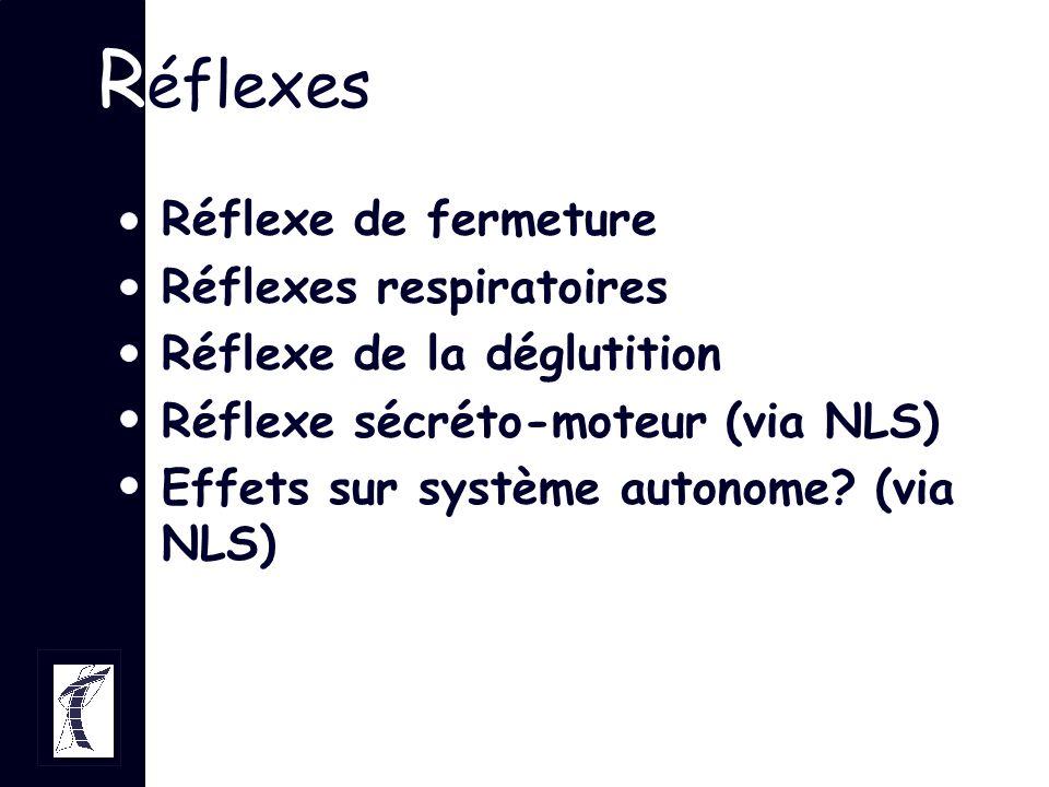 Réflexes Réflexe de fermeture Réflexes respiratoires